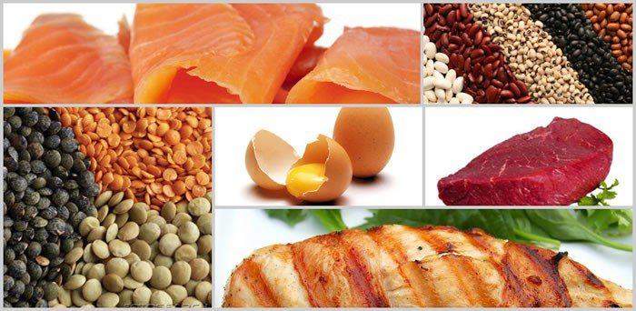 5 avantaje ale consumului de proteine raluca mihaela for Is fish considered meat